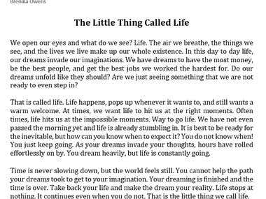 The Little Thing Called Life Sample Writing