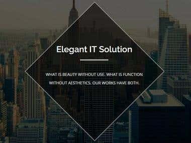Our Company http://www.elegantitsolutions.com/