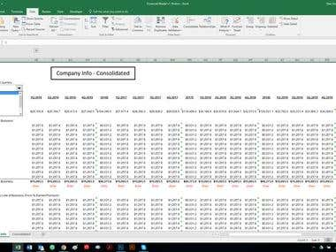 Financial Modeling for Business Plan by Formulas and VBA