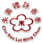 SEO Campaign for Wing Chun Singapore