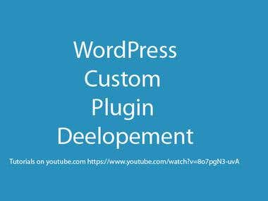 Wordpress custom plugin developement