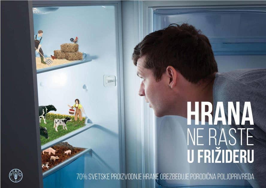 """Food doesn't grow in fridge"""