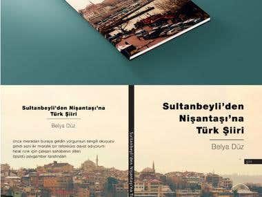 Sultanbeyli'den Nişantaşına Türk Şiiri Book Cover