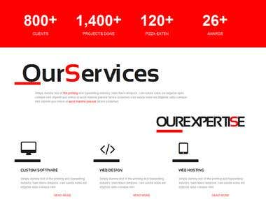 Professionally IT Company Website Design.