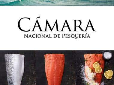 Logo for Camara