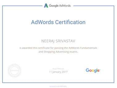 Shopping Ads Certification- Google
