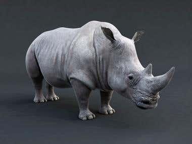 Rhino render
