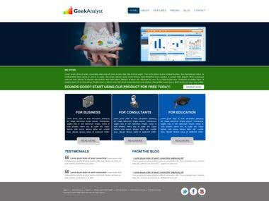 Web design and development for business consulting company