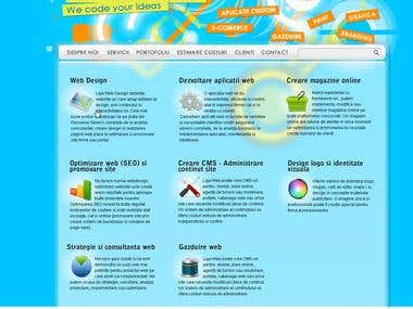 Web Design and development for web agency