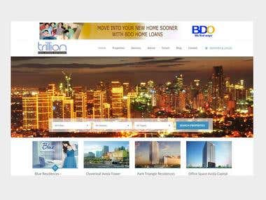 Ecommerce & Real Estate and Business – Philippines