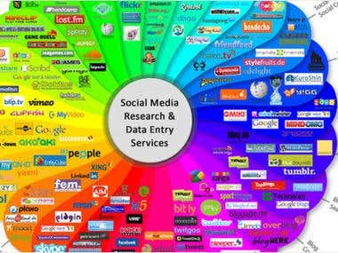 Social Media Research & Data Entry Services