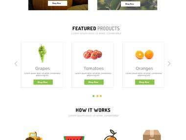 Website Template for Export fruits & vegetables