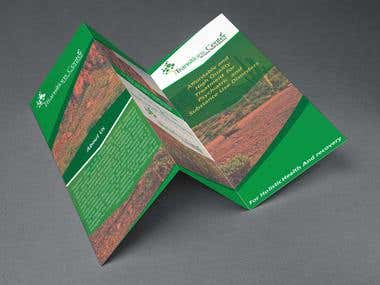 Design Brochure and Flyer