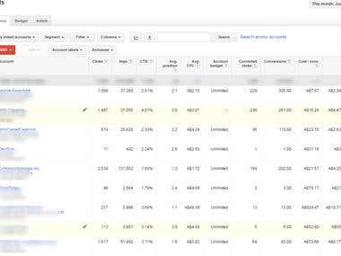 Screenshot For Adwords Projects