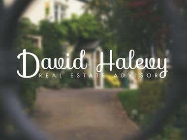 David Real Estate (Logo)