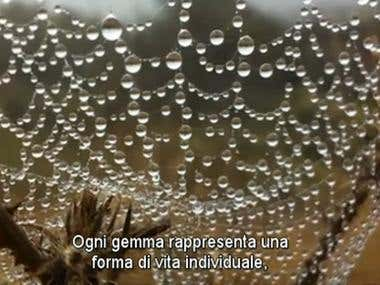 Creation of an Italian subtitles .srt file