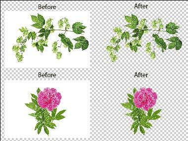 Clipping path, cutting background