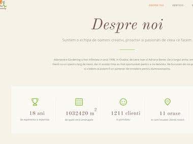 Wordpress dinamic/ responsive website