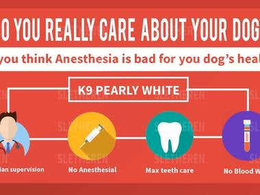 Flat design Banner for Dogs teeth cleaning Service