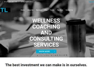 Consulting Business Website