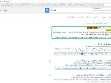 1st position on Google.ae