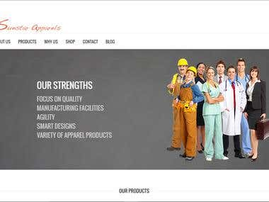 Website Design Work