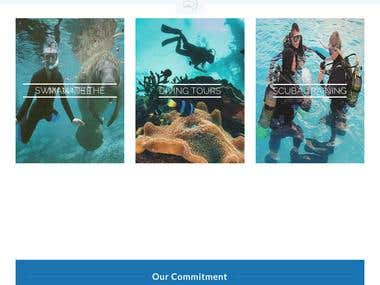 Diving and Swimming Niche Website