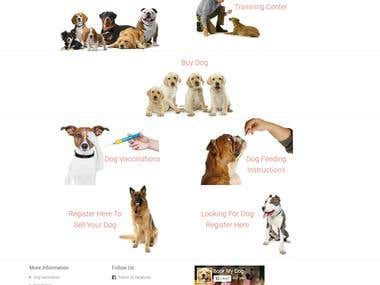 Bookmydog.in