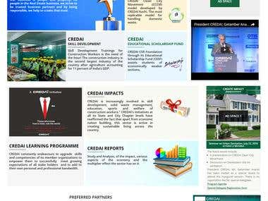 Wordpress|Website