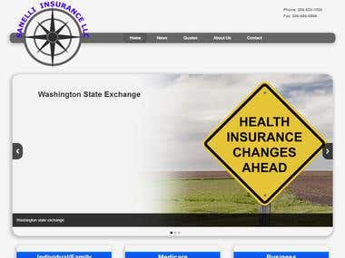 Sanelli Insurance website
