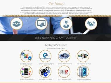 Website of Ansfy company