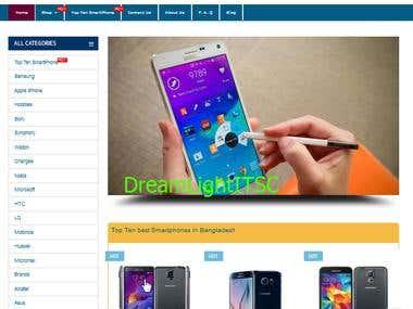 E-commerce Web Design/Development