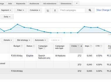 Recently Google Adwords Performance for Travel Campaign