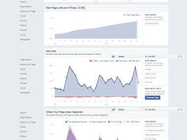 Facebook Marketing and Analytics