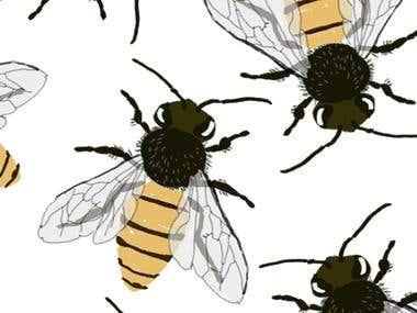 Патерн Бджоли
