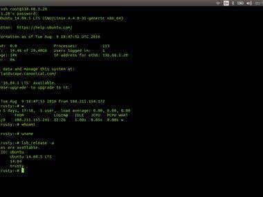 Linux DevOps System Administrator