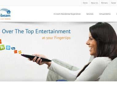 Online Video/Movie Website