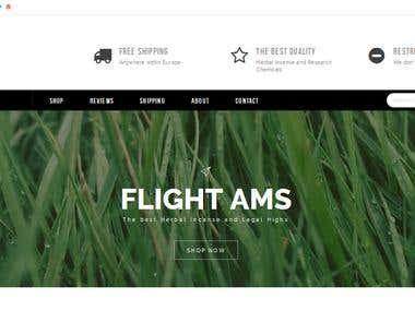 Flight Ams