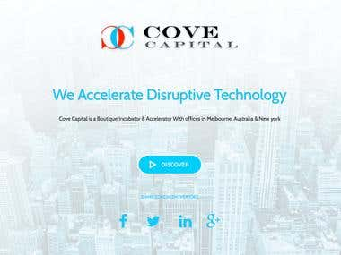 http://covecapital.com.au/  -- responsive Business Website