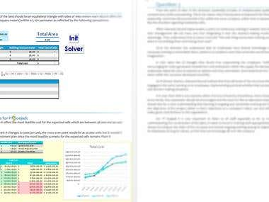 Excel+Solver+Macro+Report Writing