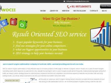 SEO Service | seocompanylucknow.com