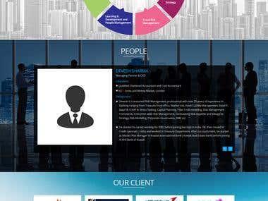 Consultantacy Company