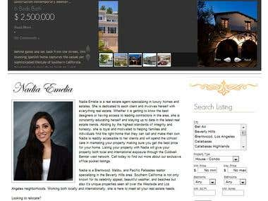 WordPress Real Estate MLS Website