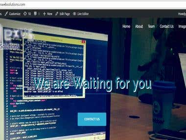 wordpress website (on going)