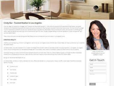 Custom Mobile Fiendly Website Design