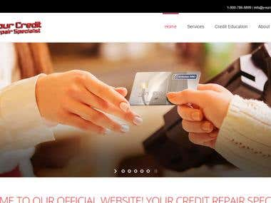 Your Credit Repair Specialist (Wordpress)