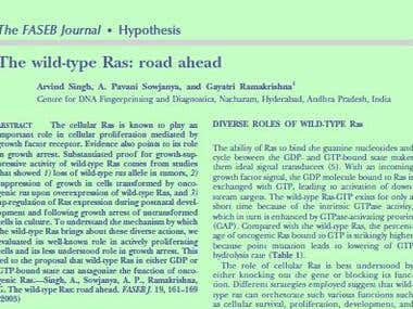 Minireview: Wild Type RAS: road ahead