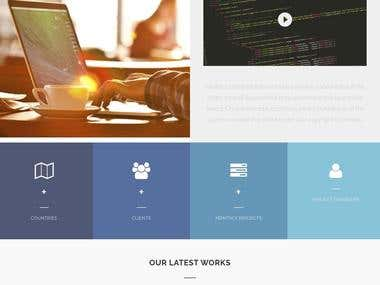 Web development business website