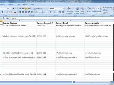 Information from website to be input into excel