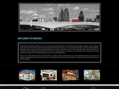 Built Website for Real Estate Firm in UK